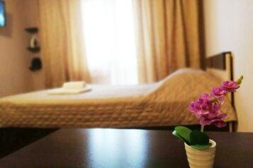 1-комн. квартира, 45 кв.м. на 3 человека, Дальневосточная улица, 29/1, Иркутск - Фотография 1