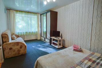 1-комн. квартира, 35 кв.м. на 4 человека, 1-я Красноармейская улица, 56А, Пермь - Фотография 1