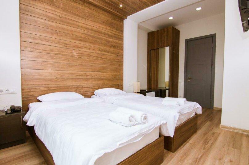 Superior Double or Twin Room with Balcony, улица Соломона Додашвили, 20, Тбилиси - Фотография 4
