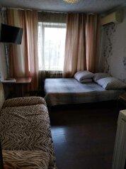 1-комн. квартира, 20 кв.м. на 4 человека, Днепровский переулок, 4, Владивосток - Фотография 1