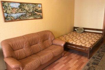 1-комн. квартира, 45 кв.м. на 4 человека, улица Чернышевского, 17Д, Пермь - Фотография 1