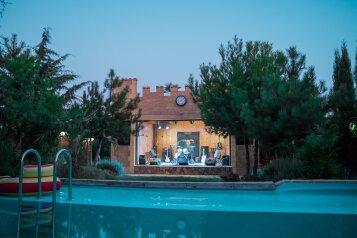 """""""Рок-Арт-Отель Hotel California"""", ул. Донецкая, 335 на 15 комнат - Фотография 1"""