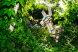 коттедж бриз, номер трехместный комфорт с видом на море:  Номер, Полулюкс, 4-местный (3 основных + 1 доп), 1-комнатный - Фотография 65