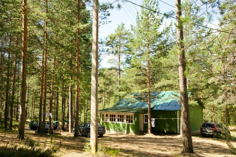 VIP, Орехово, база отдыха Журавушка, озеро Большое Борково, Санкт-Петербург - Фотография 5