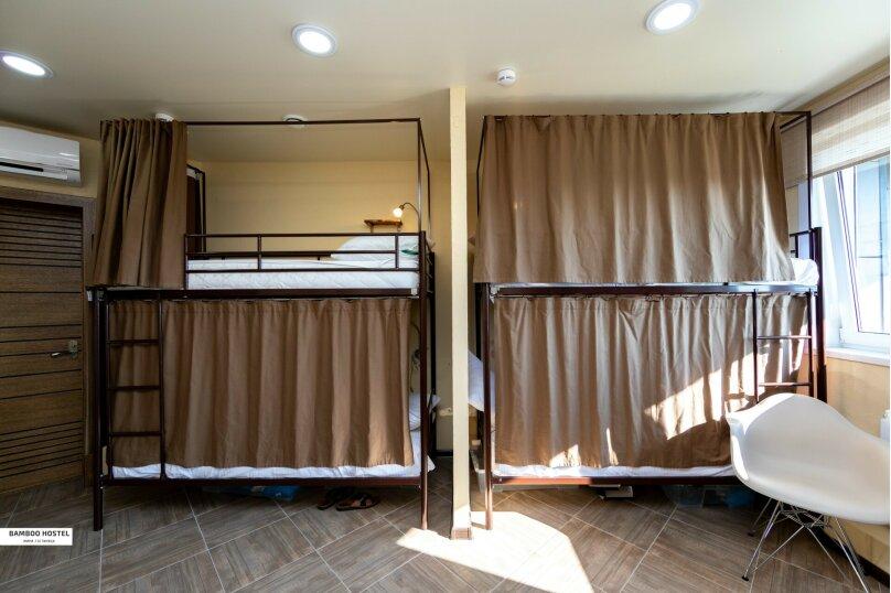 Дикое Сафари (A Wild Safari)  Общий 4-местный номер для мужчин и женщин, улица Ленина, 298Б, Адлер - Фотография 1