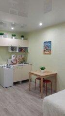 1-комн. квартира, 32 кв.м. на 2 человека, Московская улица, 121к1, Киров - Фотография 1