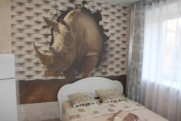 1-комн. квартира, 20 кв.м. на 2 человека, улица Дежнёва, 2к1, Казань - Фотография 1