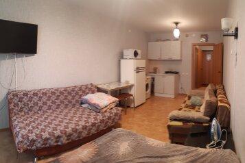 1-комн. квартира, 28 кв.м. на 4 человека, Ярыгинская набережная, 9, Красноярск - Фотография 1