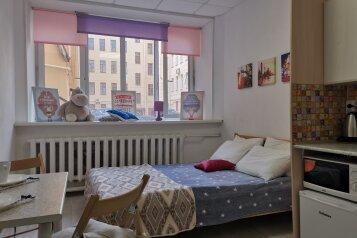 1-комн. квартира, 22 кв.м. на 3 человека, улица Чапыгина, 1, Санкт-Петербург - Фотография 1