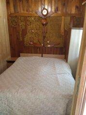 Дом, 40 кв.м. на 5 человек, 2 спальни, улица Крупской, 21, село Окуневка - Фотография 1