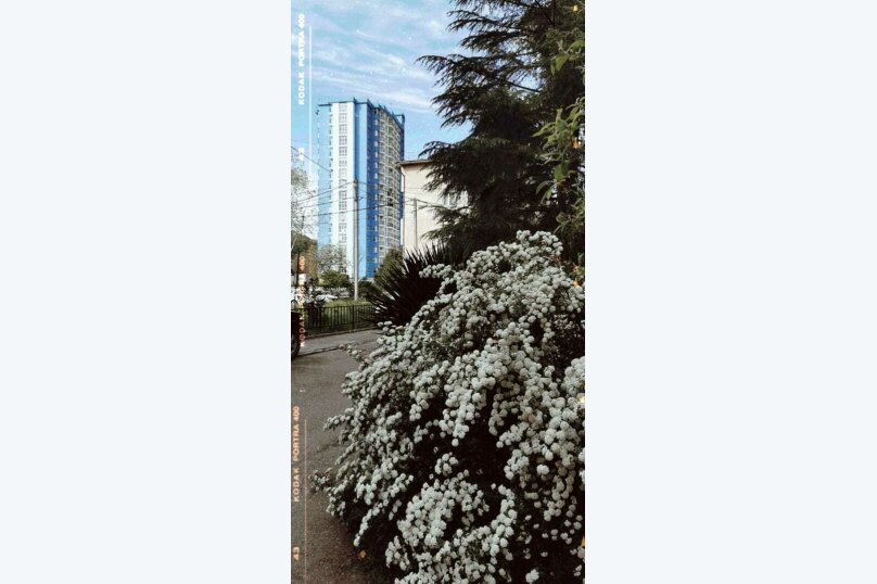 1-комн. квартира, 33 кв.м. на 2 человека, улица Гайдара, 22, Дагомыс - Фотография 12