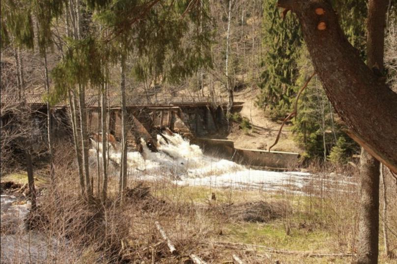 База отдыха, Петровская волость, вблизи поселка ж/д. станции Петяярви на 11 номеров - Фотография 3