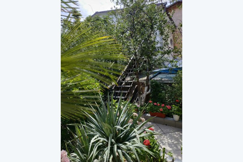 гостевой дом у моря на улице Дражинского,7, 55 кв.м. на 4 человека, 2 спальни, улица Дражинского, 7, Ялта - Фотография 23