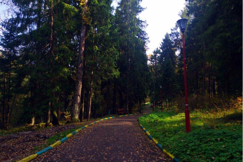 """Парк-отель """"Покровское"""", посёлок дома отдыха Покровское, 65 на 300 номеров - Фотография 26"""