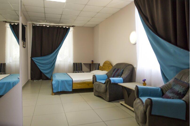 Комфорт Плюс с одной двуспальной кроватью , Новороссийская улица, 7, Барнаул - Фотография 1