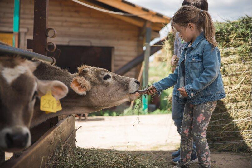 Ферма Лукино, деревня Лукино, Подворье Лукино на 10 номеров - Фотография 27