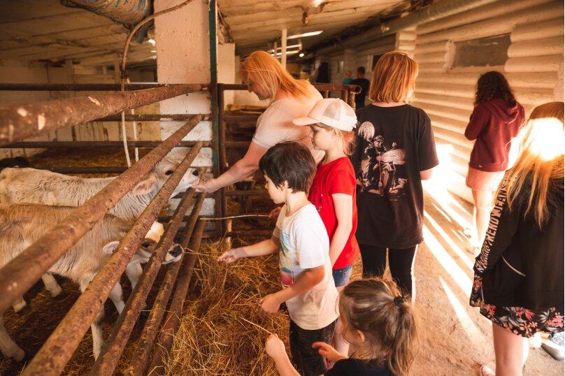 Ферма Лукино, деревня Лукино, Подворье Лукино на 10 номеров - Фотография 32