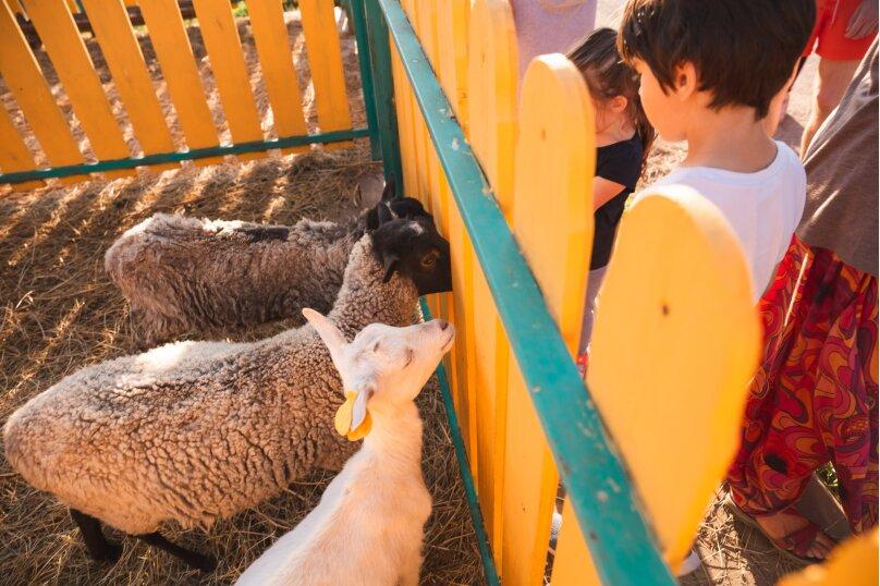Ферма Лукино, деревня Лукино, Подворье Лукино на 10 номеров - Фотография 33