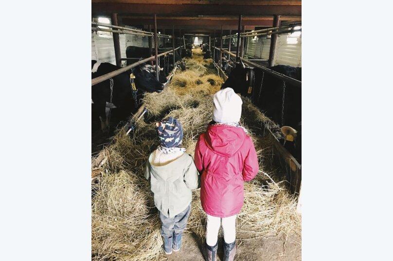 Ферма Лукино, деревня Лукино, Подворье Лукино на 10 номеров - Фотография 38