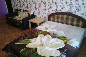 1-комн. квартира, 36 кв.м. на 2 человека, улица Челюскинцев, 12, Новосибирск - Фотография 1