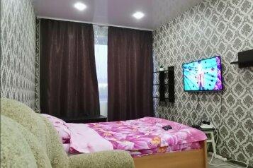 1-комн. квартира, 33 кв.м. на 4 человека, Ленинградская улица, 27, Чебоксары - Фотография 1