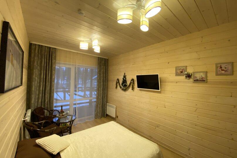 """Гостевой дом """"Pine Land"""", Суоярвская, 65 на 3 комнаты - Фотография 233"""