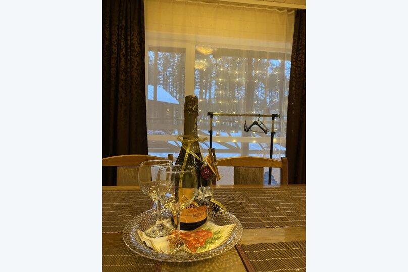 """Гостевой дом """"Pine Land"""", Суоярвская, 65 на 3 комнаты - Фотография 246"""