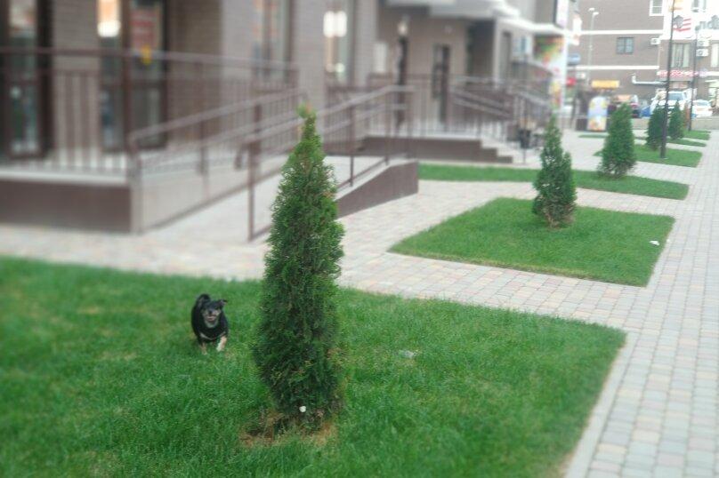 1-комн. квартира, 35 кв.м. на 4 человека, улица Евгении Жигуленко, 13, Краснодар - Фотография 16