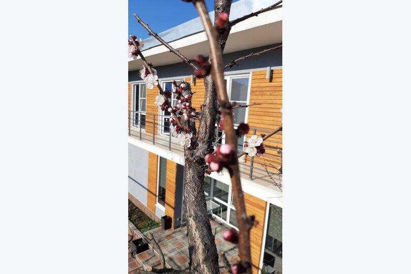 """Гостевой дом """"Абрикос / У Ольги"""", Геленджикская улица, 3А на 6 комнат - Фотография 22"""
