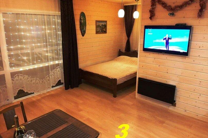 """Гостевой дом """"Pine Land"""", Суоярвская, 65 на 3 комнаты - Фотография 267"""