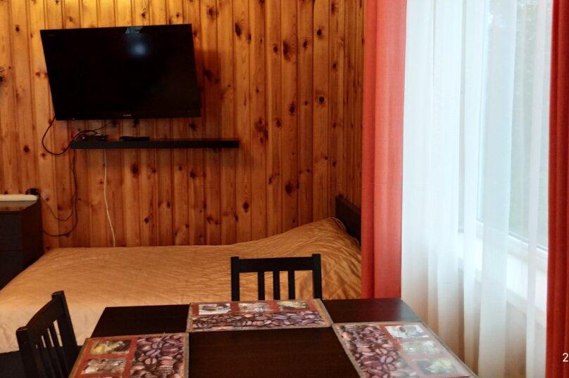 Дом , 30 кв.м. на 4 человека, 1 спальня, Дер. Тулокса, 23, Олонец - Фотография 13