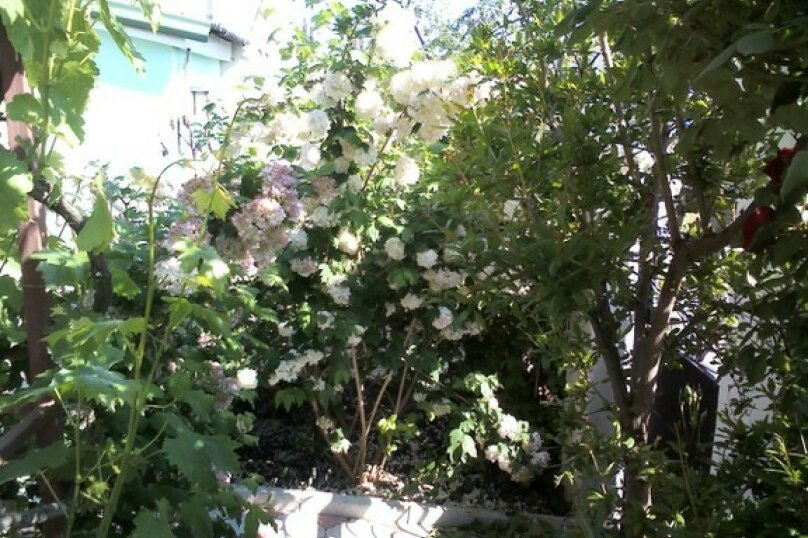 """Гостевой дом """"СОЛНЫШКО"""", Заречная улица, 53 на 12 комнат - Фотография 8"""