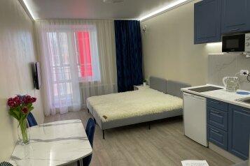 1-комн. квартира, 28 кв.м. на 3 человека, улица Аметьевская Магистраль, 16к4, Казань - Фотография 1