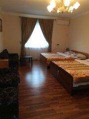 Гостевой дом  Абхазский дворик, Альпийская, 19 на 8 комнат - Фотография 1
