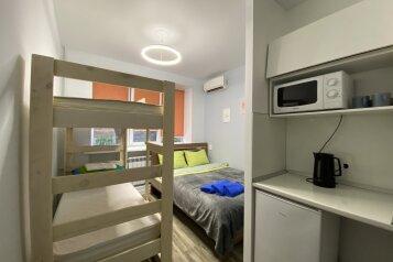 1-комн. квартира, 14 кв.м. на 4 человека, Трудовой переулок, 13, Владивосток - Фотография 1
