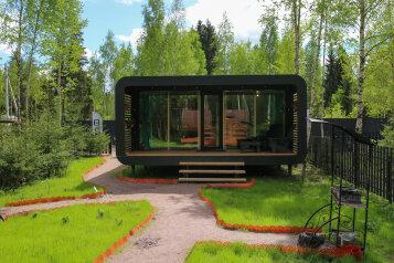 Умный дом Елки Large, 37 кв.м. на 6 человек, 2 спальни, деревня Черемыкино, Лесогорская улица, 104, Санкт-Петербург - Фотография 1