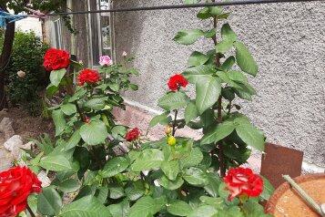 Зеленый дворик, улица Ленина, 49 на 15 комнат - Фотография 1