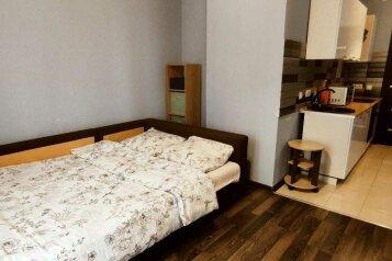 1-комн. квартира, 30 кв.м. на 2 человека, улица имени К.И. Вороницына, 1к1, Химки - Фотография 1