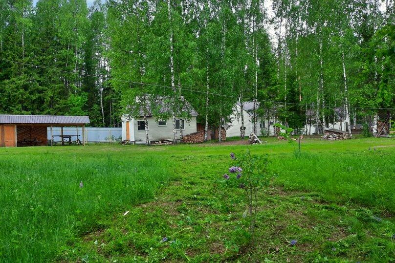 Дом в лесу ( 4 шт.) на берегу озера , деревня Стеклино, 36 на 4 номера - Фотография 10