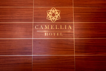 """Отель"""" Камелия"""", улица Амет-хана Султана, 27 на 9 номеров - Фотография 1"""