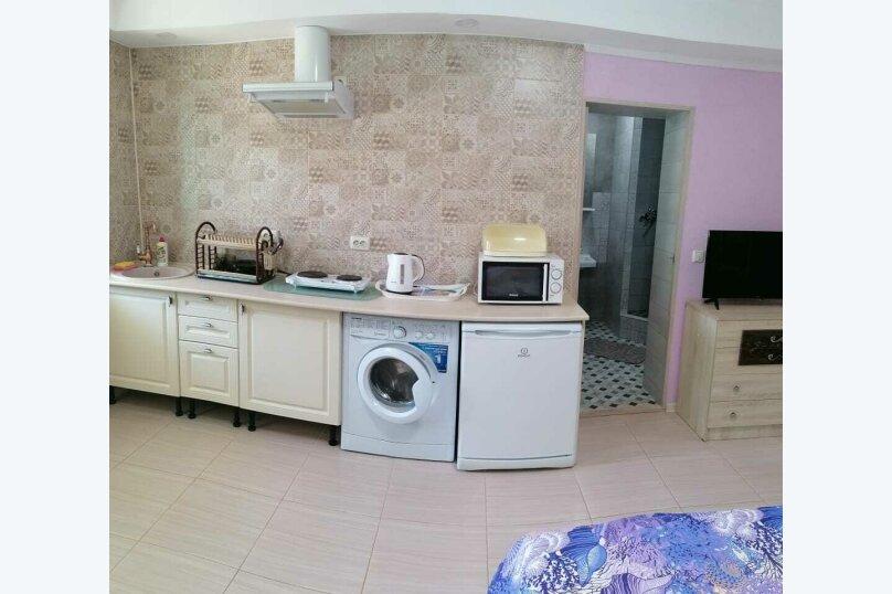 Люкс с кухней, Голубая волна, 7, Заозерное - Фотография 16