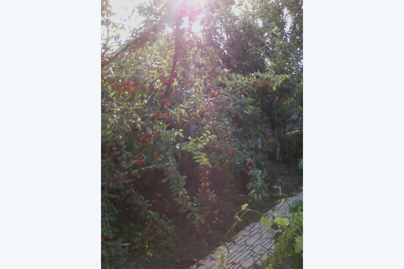 """Гостевой дом """"Экоферма"""", СВТ-3 Акташ, улица Макарова на 4 комнаты - Фотография 30"""