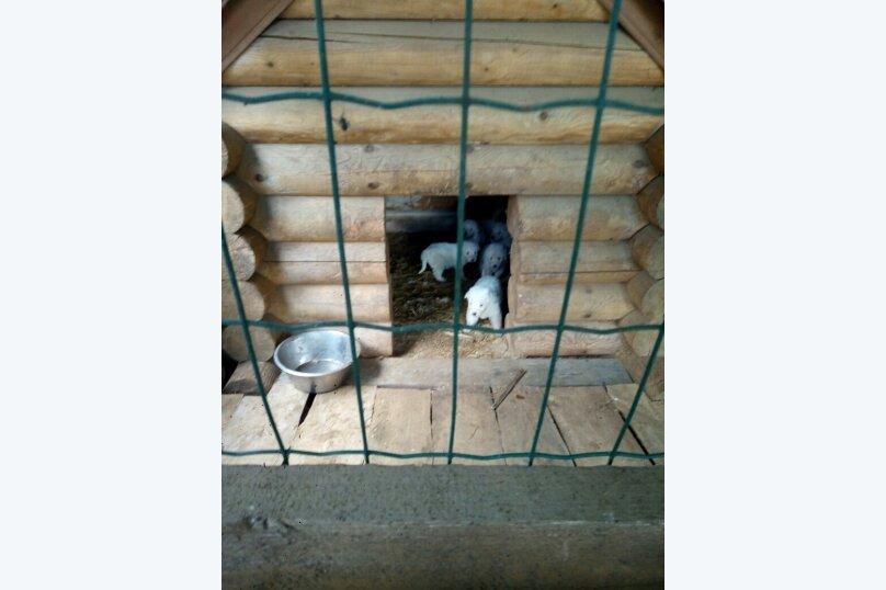 """База отдыха """"Лестной Скит"""", деревня Коротково, 1 на 10 номеров - Фотография 24"""