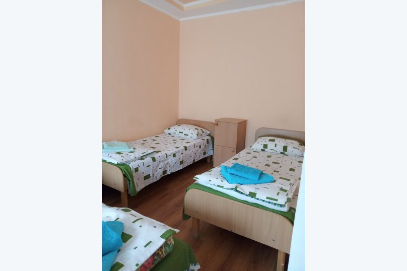 """Гостевой дом """"Баланжур"""", Крестовского, 46 на 28 комнат - Фотография 25"""