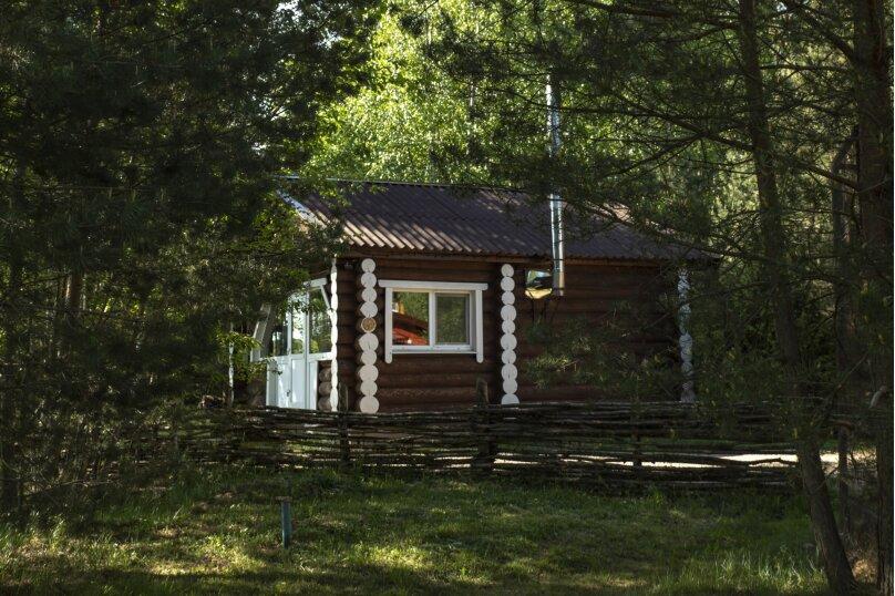 Дом №4  Рубленный домик студия, Березовая, 6, Осташков - Фотография 1